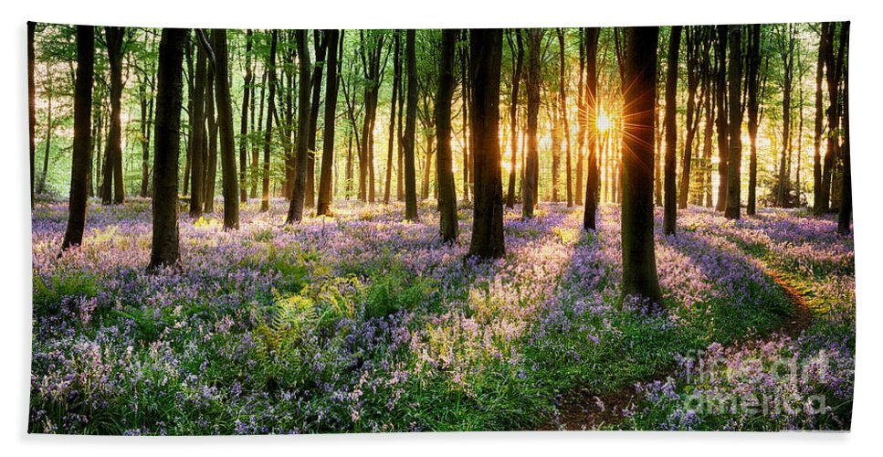 Flower Beach Towel featuring the photograph Sunrise Path Through Bluebell Woods by Simon Bratt Photography LRPS