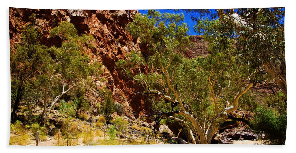 Gum Tree Ridge Beach Towel featuring the photograph Path To The Gum Trees And Waterhole by Douglas Barnard