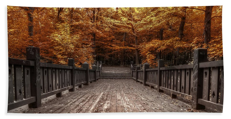 Landscape Beach Towel featuring the photograph Path To The Wild Wood by Scott Norris