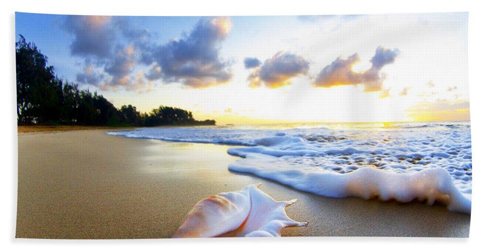 Seashell Beach Towel featuring the photograph Peaches N' Cream by Sean Davey