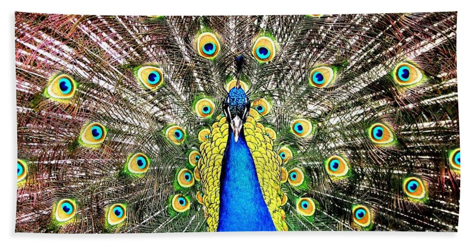 Peacocks Beach Towel featuring the photograph Peacock by Rose Santuci-Sofranko