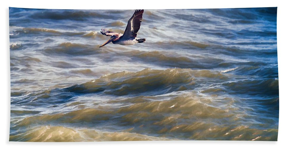 Ocean Beach Towel featuring the digital art Pelican Briefly by John Haldane