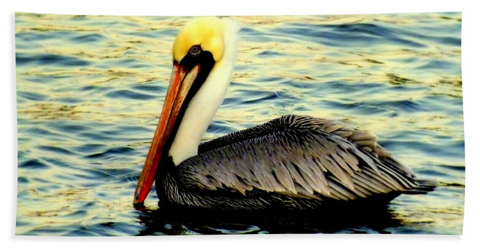 Pelicans Beach Towel featuring the photograph Pelican Waters by Karen Wiles