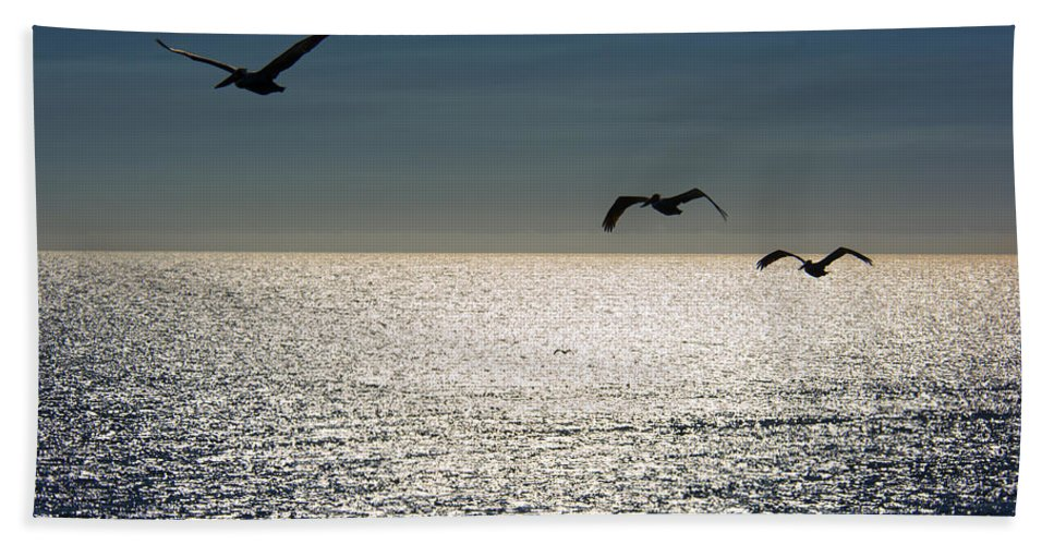 Pelicans Beach Towel featuring the photograph Pelicans In Flight by Erika Fawcett