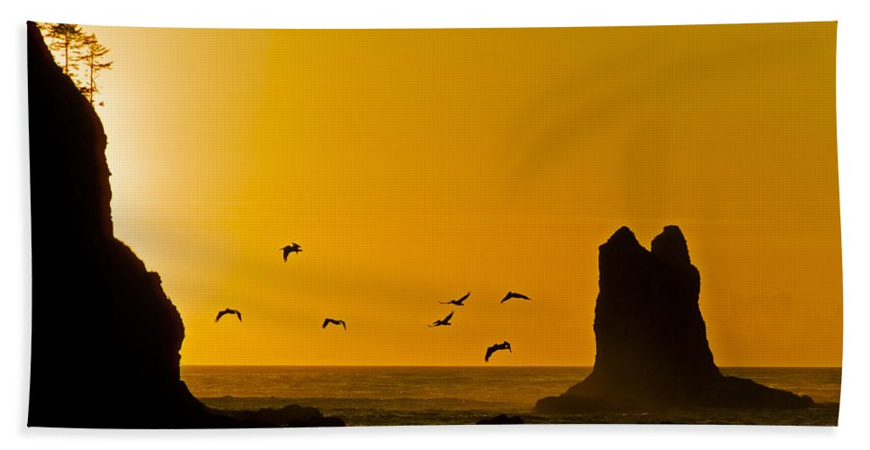 La Push Beach Towel featuring the photograph Pelicans On The Wing II by Greg Reed