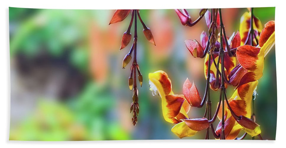 Antigua Beach Towel featuring the photograph Pending Flowers by Roberto Pagani