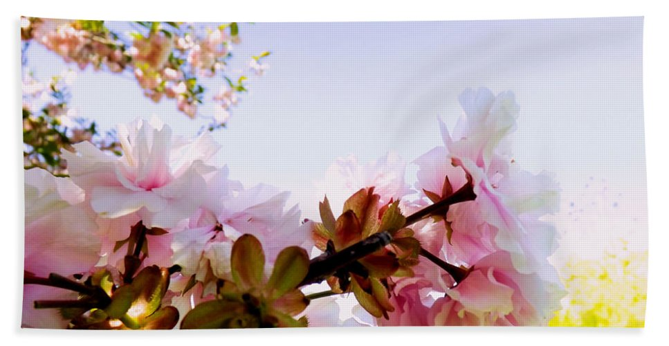 Pink Beach Towel featuring the photograph Petals In The Wind by Robyn King