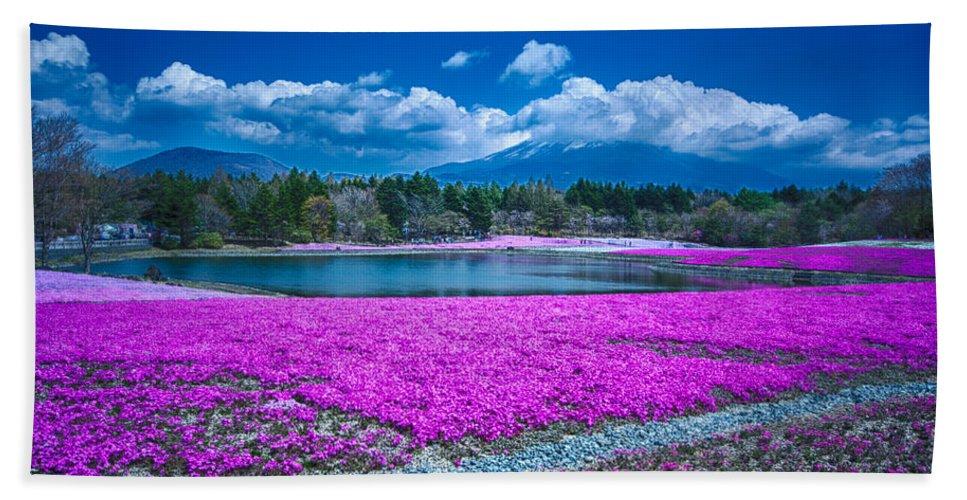Mt. Fuji Beach Towel featuring the photograph Phlox And Mt. Fuji by Jonah Anderson