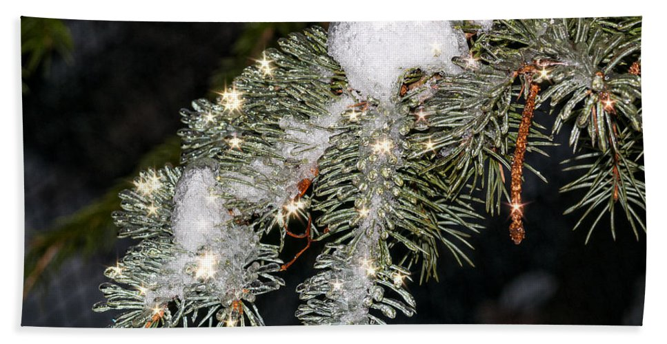 Pine Beach Towel featuring the photograph Pine Branch With Ice And Stars by Les Palenik