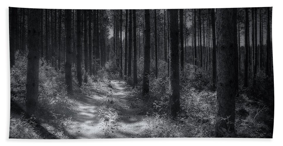 Trees Beach Towel featuring the photograph Pine Grove by Scott Norris