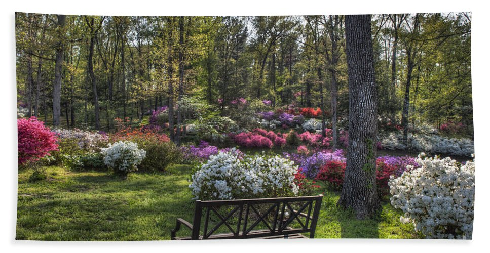 2012 Beach Towel featuring the photograph Pinecrest Gardens by Larry Braun