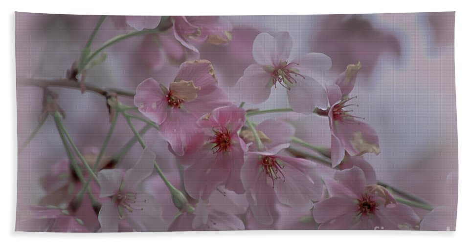 Pink Beach Towel featuring the photograph Pink Blossoms by Scott Hervieux