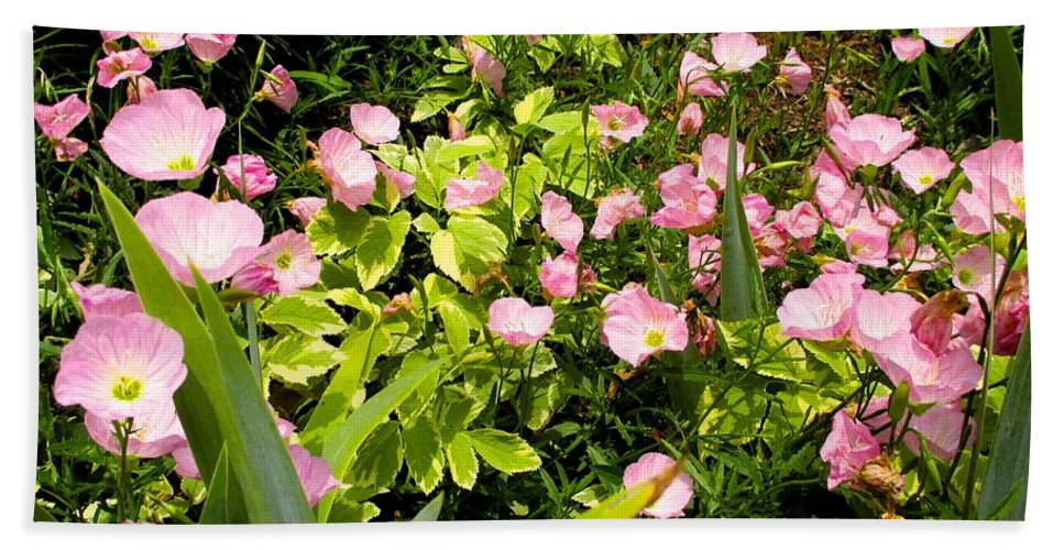 Pink Cosmos Flowers Beach Towel featuring the photograph Pink Cosmos Swirl by Kendall Kessler