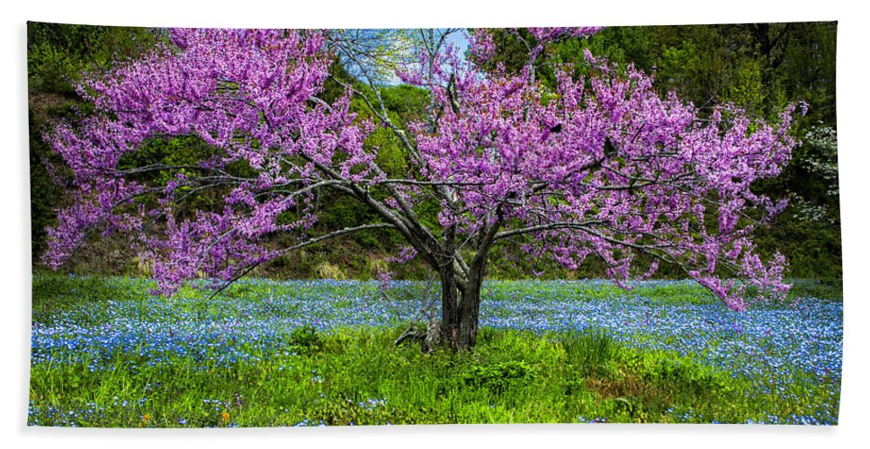 Appalachia Beach Towel featuring the photograph Pink by Debra and Dave Vanderlaan