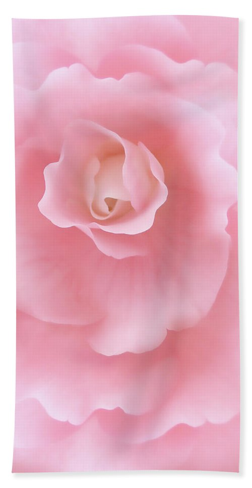 Begonia Beach Towel featuring the photograph Pink Fantasy Begonia Flower by Jennie Marie Schell