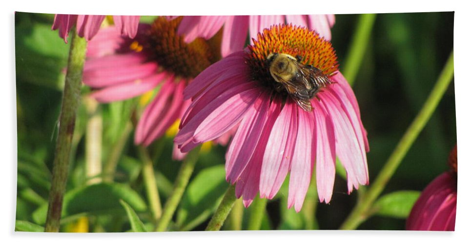 Flower Beach Towel featuring the photograph Pink Flower and Bee by Anita Burgermeister