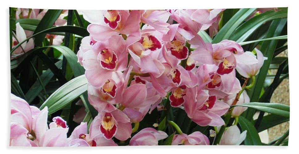 Floral Beach Towel featuring the photograph Pink Orchids by Karin Dawn Kelshall- Best