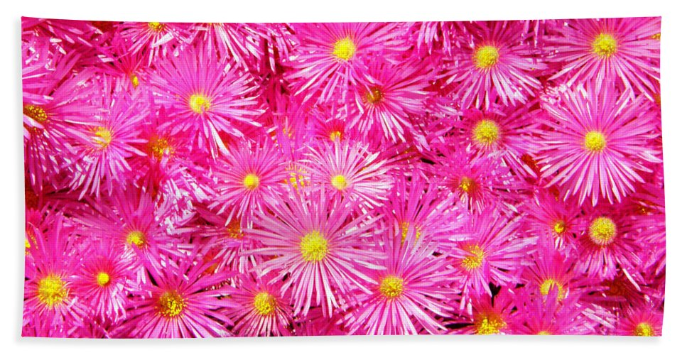 Flowers Beach Towel featuring the photograph Pink by Stephen Edwards