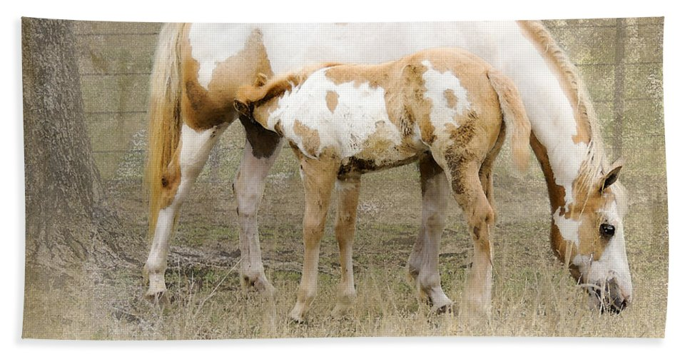 Equine Beach Towel featuring the photograph Pinto Mare And Filly by Betty LaRue