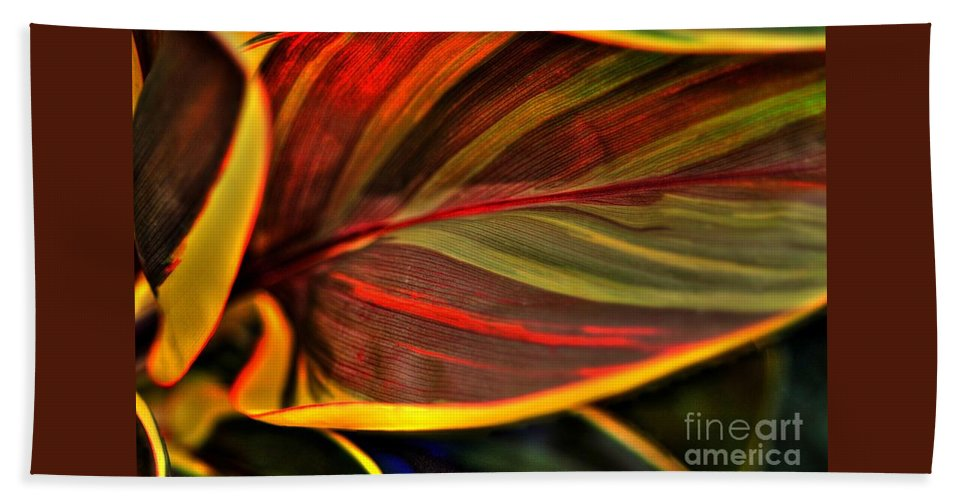 Plant Beach Towel featuring the photograph Plant Leaf by Kathleen Struckle