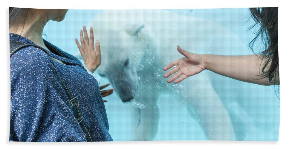 Bear Beach Towel featuring the photograph Polar Bear 3 by David Lange