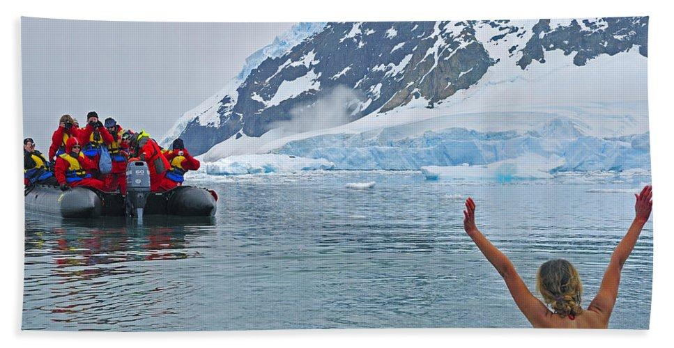 Antarctica Beach Towel featuring the photograph Polar Dip by Tony Beck