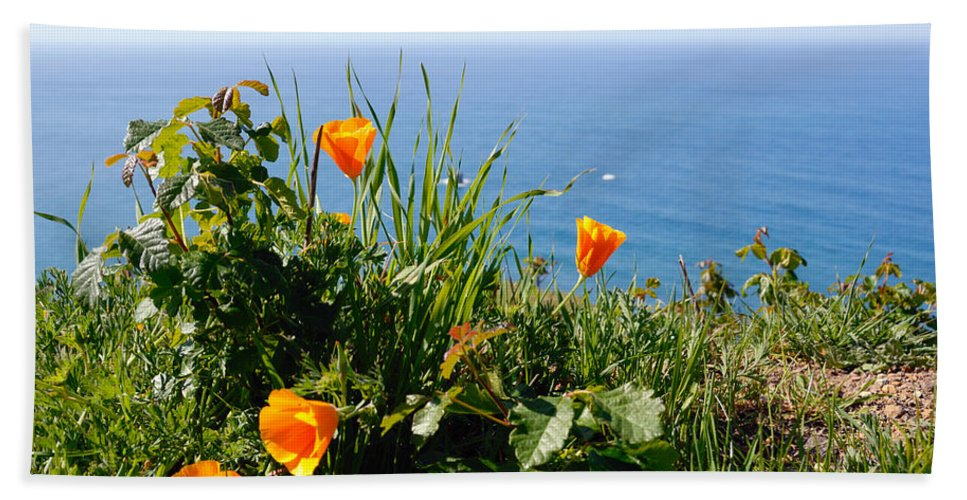 Poppies Beach Towel featuring the photograph Poppies On The Pacific by Lynn Bauer