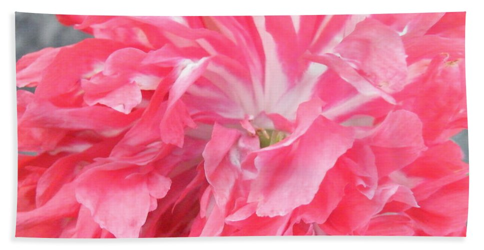 Poppy Beach Towel featuring the photograph Popping Pink by Brian Boyle
