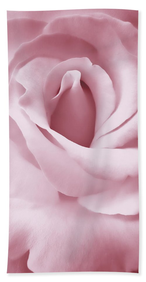Rose Beach Towel featuring the photograph Porcelain Pink Rose Flower by Jennie Marie Schell