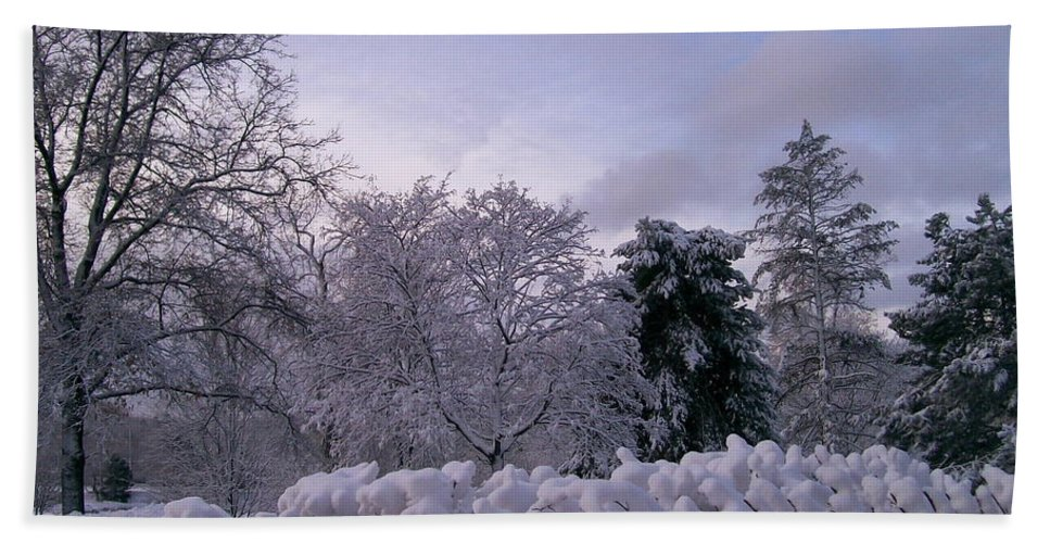 Snow Beach Towel featuring the photograph Prettiest Snow Of The Season by Laurie Eve Loftin
