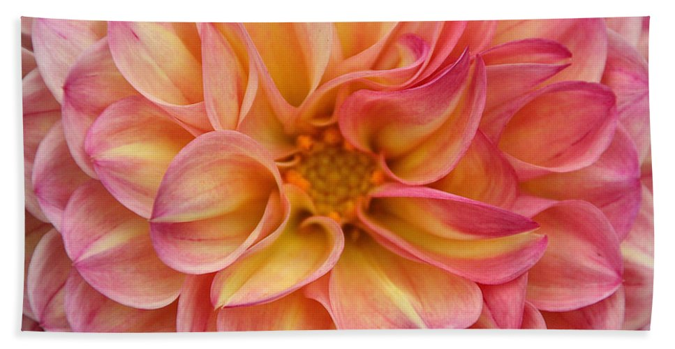 Flower Beach Towel featuring the photograph Pure Pastels by Susan Herber