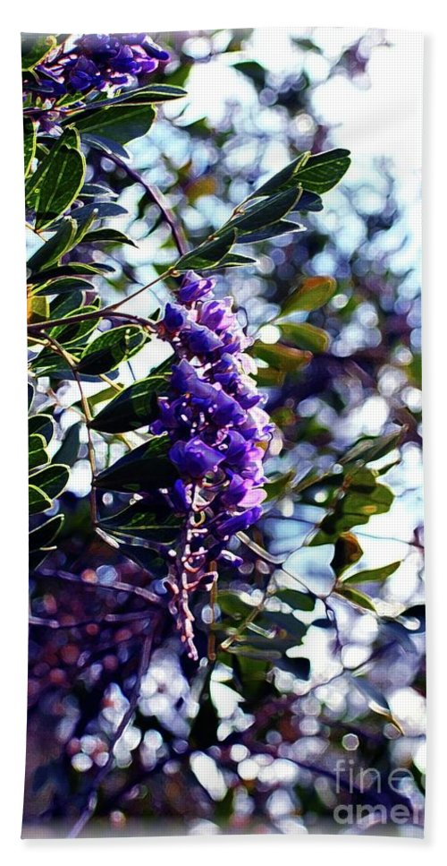 Purple Beach Towel featuring the photograph Purple Flowering Tree by Kathleen Struckle
