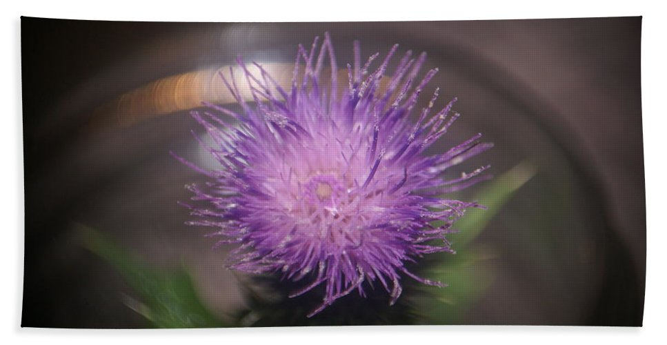 Close Up Beach Towel featuring the photograph Purple Thistle by Rob Luzier