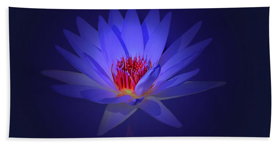 Flower Beach Towel featuring the photograph Purple Water Lily by John Absher