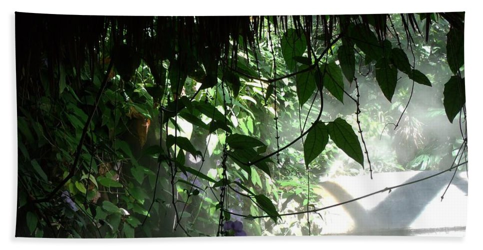 Rain Forest Beach Towel featuring the photograph Rain Forest Overhang by Jared Best