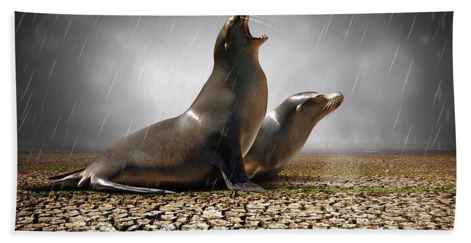Animal Beach Towel featuring the photograph Rain Relief by Carlos Caetano