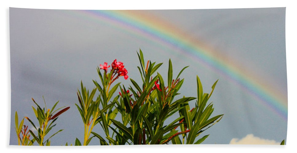 Augusta Stylianou Beach Towel featuring the photograph Rainbow Over Flower by Augusta Stylianou