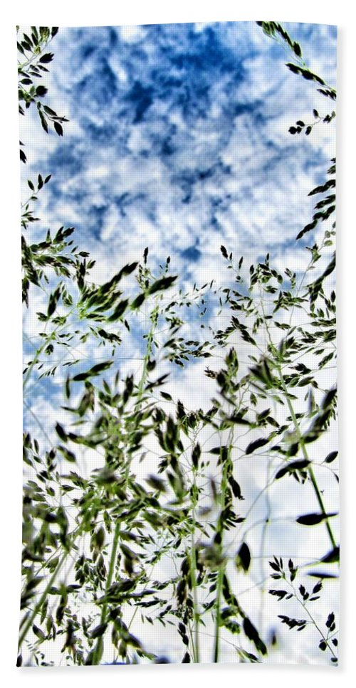 Reach To The Sky Beach Towel featuring the photograph Reach To The Sky by Marianna Mills