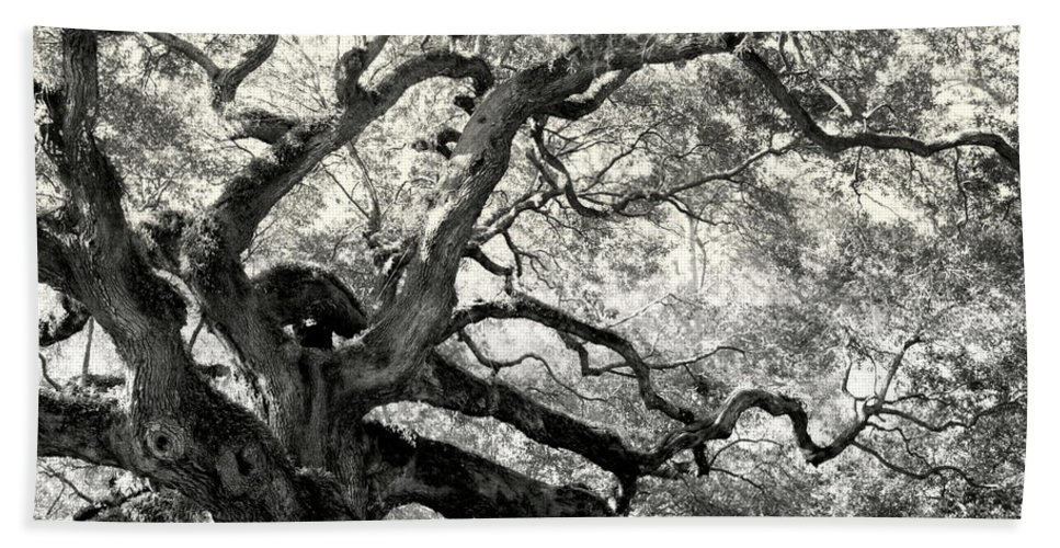 Abstract Trees Beach Towel featuring the photograph Reaching For Heaven by Karen Wiles