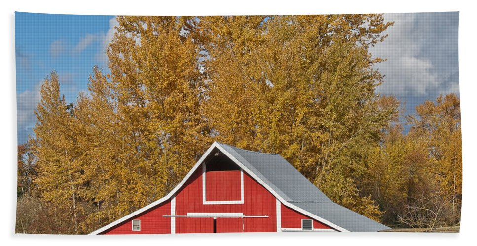 Agricultural Activity Beach Towel featuring the photograph Red Barn And Fall Colors by Jeff Goulden