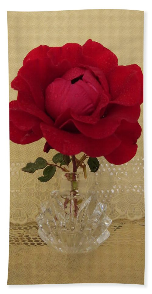 Rose Beach Towel featuring the photograph red rose III by Zina Stromberg