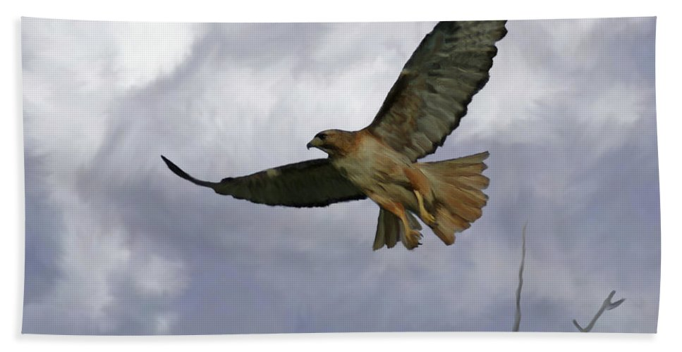Birds Beach Towel featuring the painting Red Tail Hawk Digital Freehand Painting 1 by Ernie Echols