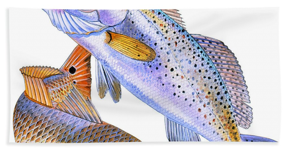 Trout Beach Towel featuring the painting Redfish Trout by Carey Chen