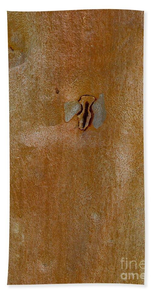 Bush Beach Towel featuring the photograph Redgum Tree by Steven Ralser