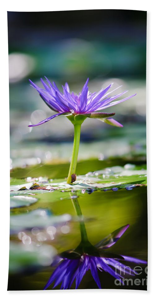 Flower Beach Towel featuring the photograph Reflection Of Life by Charles Dobbs