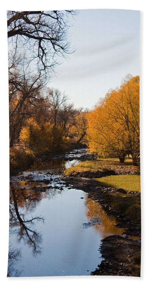Fall Beach Towel featuring the photograph Reflections by Diana Marcoux