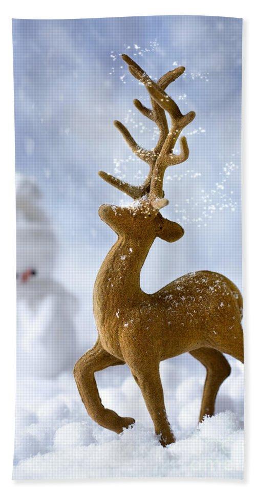 Reindeer Beach Towel featuring the photograph Reindeer In Snow by Amanda Elwell
