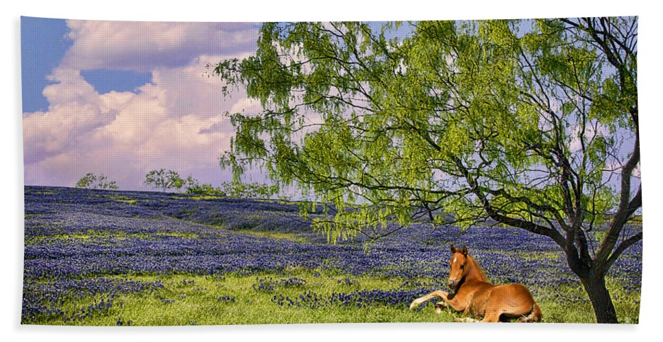 Bluebonnets Beach Towel featuring the photograph Resting Among The Bluebonnets by Priscilla Burgers