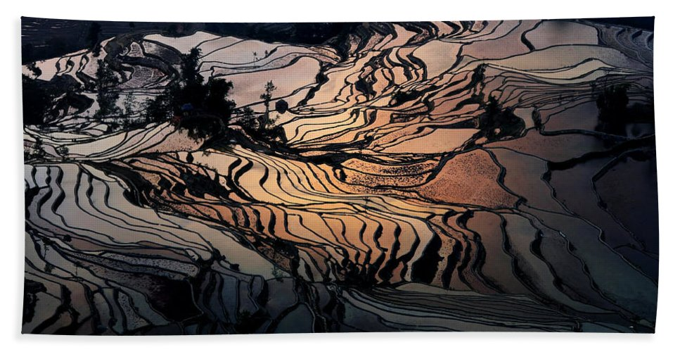 Agriculture Beach Towel featuring the photograph Rice Terrace Field Of Yuan Yang by Kim Pin Tan