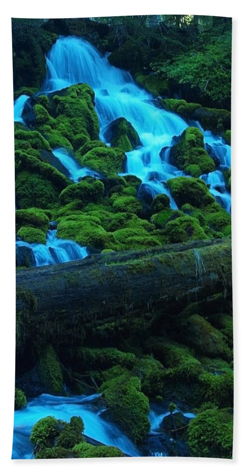 Tree Beach Towel featuring the photograph Right Side Of Clearwater Falls by Teri Schuster